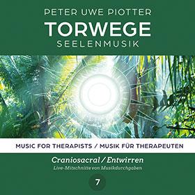 Piotter_torwege_7