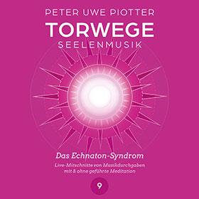 Piotter_torwege_9